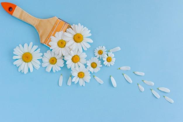 Kompozycja kwiatów. kreatywny układ wykonany z białych kwiatów rumianku i pędzlem na pastelowym tle. płaski świeckich, widok z góry, kopia przestrzeń.