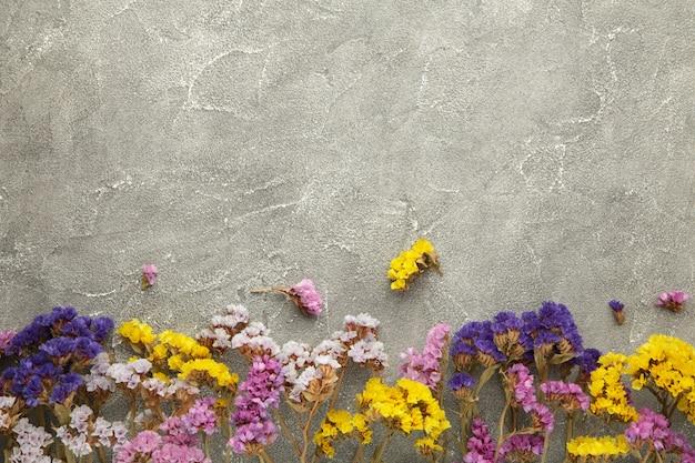 Kompozycja kwiatów. kwiaty łyszczec. koncepcja wiosna, lato. widok z góry na płasko.