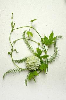 Kompozycja kwiatów na walentynki, dzień matki lub dzień kobiet. kalina boulle-de-neig kwiaty