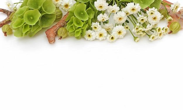 Kompozycja kwiatów obramowanie wykonane z kwiatów, w stylu zdjęcia z molucellą