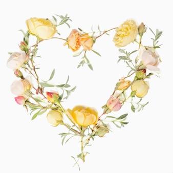 Kompozycja kwiatów. rama wykonana z angielskich kwiatów róży w kształcie serca na białym tle. płaski świeckich, widok z góry. skopiuj miejsce. koncepcja urodziny, matki, walentynki, kobiet, dzień ślubu.