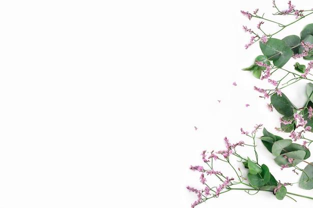 Kompozycja kwiatów. rama wykonana z różowych kwiatów łyszczec i gałęzi eukaliptusa na białym tle. leżał na płasko, widok z góry, miejsce na kopię.