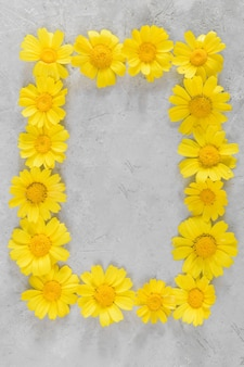 Kompozycja kwiatów. rama wykonana z żółtych rumianków lub stokrotek na szarym tle. mieszkanie leżało