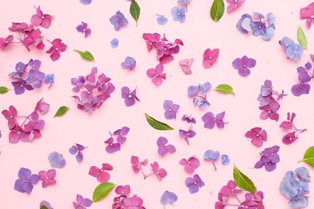 Kompozycja kwiatów. ramka z suszonych różowych kwiatów na białym tle. płaski leżak, widok z góry, miejsce na kopię