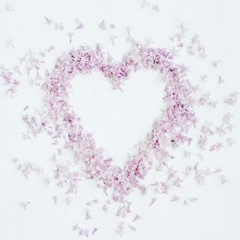 Kompozycja kwiatów. serce symbol fioletowe kwiaty bzu. widok z góry, leżał płasko