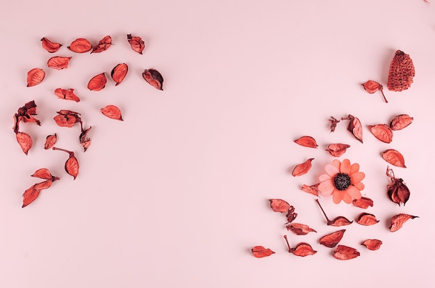 Kompozycja kwiatów. suszone liście, kwiaty, płatki, pąki na pastelowym różowym tle,