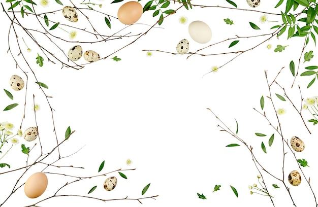 Kompozycja kwiatów wielkanocnych. wzór wykonany z gałęzi i liści. płaski układ, widok z góry.