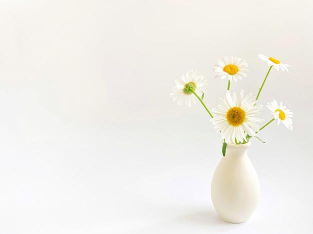 Kompozycja kwiatowa. high-key fotografia z białymi stokrotkami w glinianym wazonie na białym tle. szablon światła naturalnego dla twoich projektów.