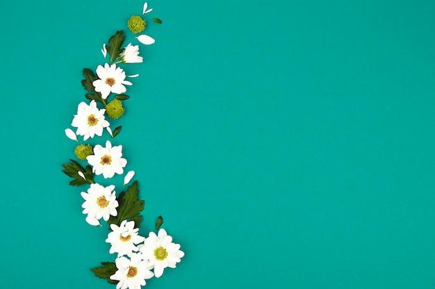 Kompozycja kwiatowa na jasnozielonej przestrzeni. białe chryzantemy i zielone liście. miejsce na tekst