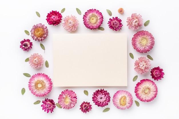 Kompozycja kwiatowa. puste papieru i rama wykonana z suchych kwiatów na białym tle. leżał na płasko. widok z góry. skopiuj miejsce - obraz