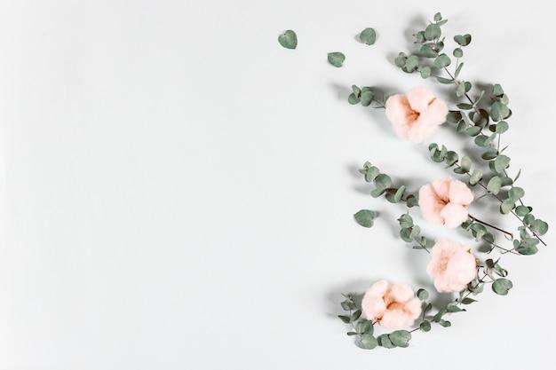 Kompozycja kwiatowa - świeże liście eukaliptusa i bawełniane kwiaty na jasnym tle.