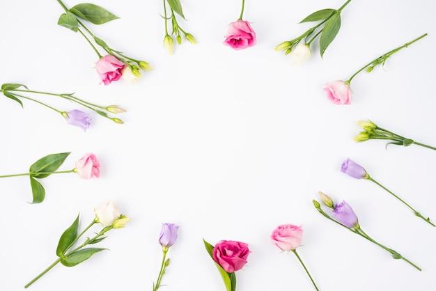 Kompozycja kwiatowa tworząc okrągłą ramkę