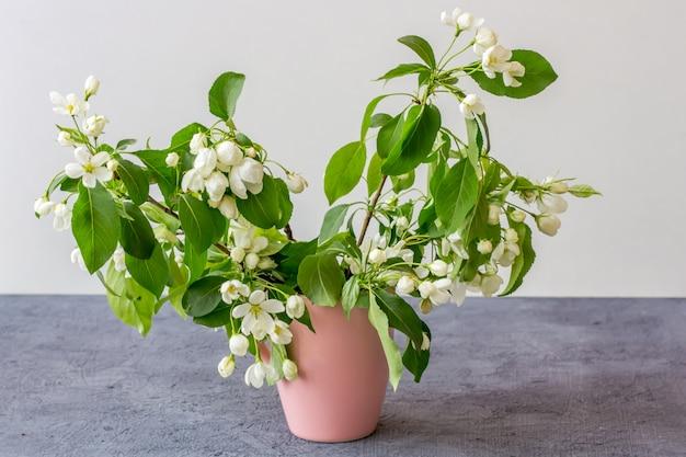 Kompozycja kwiatowa w słoneczny dzień wiosny. kwitnąca gałąź jabłoni w różowej mini wazonie na szarym tle. skopiuj miejsce na tekst