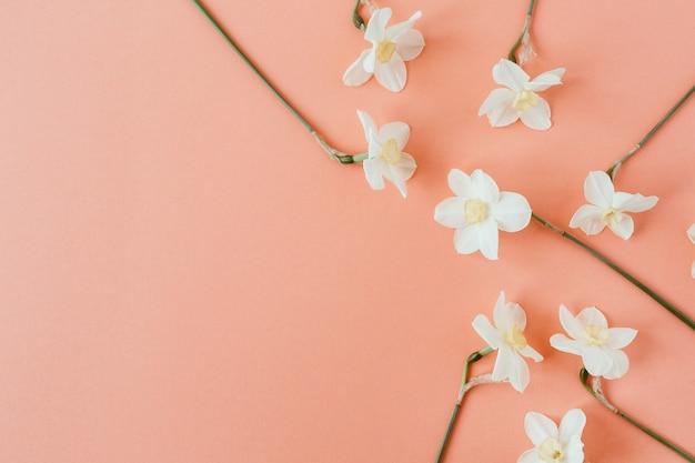 Kompozycja kwiatowa z kwiatem narcyza na tle żywego koralowca.