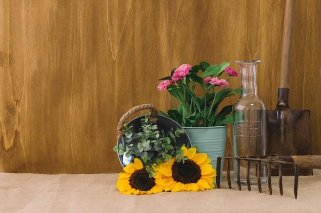 Kompozycja kwiatowa z roślinami i przestrzeń po lewej