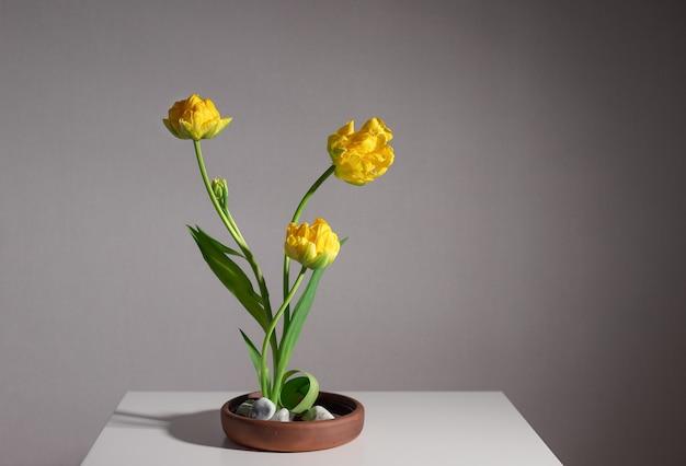 Kompozycja kwiatowa z żółtych tulipanów i gałęzi drzew w ceramicznym wazonie z białymi kamieniami. ozdoba artystyczna z kwiatów ikebana. szare tło