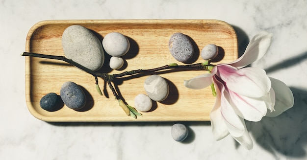 Kompozycja leżąca płasko z pięknymi wiosennymi kwiatami magnolii i szarymi kamieniami na tle białego marmuru. relaks i koncepcja zen jak.