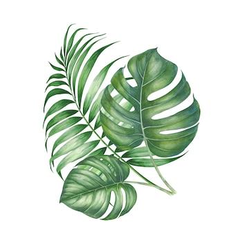Kompozycja liści palmowych.