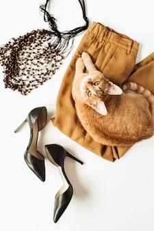 Kompozycja mody z nowoczesnymi ubraniami dla kobiet, akcesoriami, rudym kotem na białej powierzchni