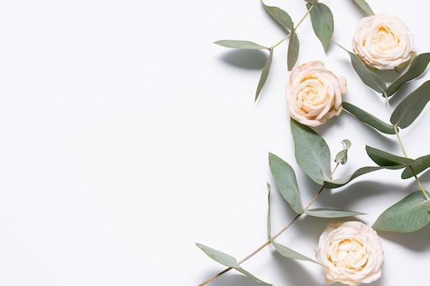 Kompozycja w stylu minimalizmu. obramowanie kwiatów wykonane z gałązki eukaliptusa i pięknych kwiatów róży