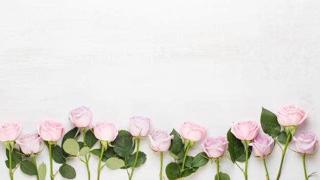 Kompozycja walentynki kwiaty. rama wykonana z różowej róży na szarym tle. leżał na płasko, widok z góry, miejsce na kopię.