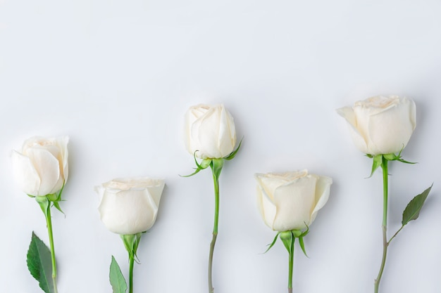 Kompozycja wiosennych kwiatów. kreatywnie wzór pastelowy kwiat róży na różowo. romantyczne tło. koncepcja walentynki, kobiet, dzień matki lub ślubu.