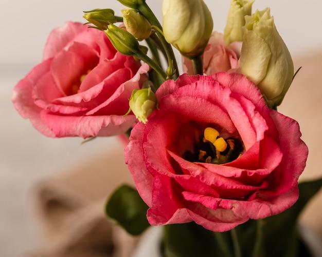 Kompozycja z bliska różowych róż