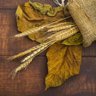Kompozycja z kolcami pszenicy i worek z konopie