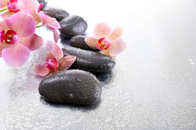Kompozycja z piękną kwitnącą orchideą z kroplami wody i kamieniami spa, na jasnym tle