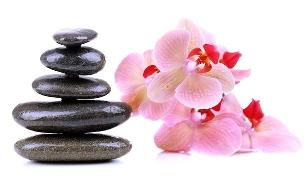 Kompozycja z pięknie kwitnącą orchideą z kroplami wody i kamieniami spa