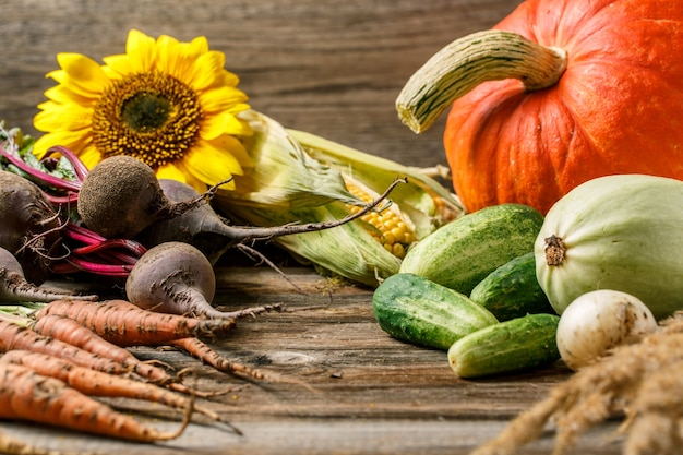 Kompozycja z różnymi warzywami