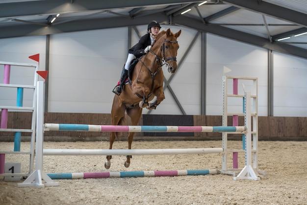 Koń w sprzęcie sportowym z jeźdźcem w siodle przeskakuje barierkę na zawodach w skokach przez przeszkody