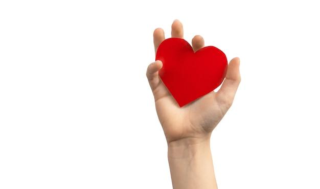 Koncepcja dnia narządów. ręka trzyma czerwone serce na białym tle na białym tle. skopiuj zdjęcie miejsca