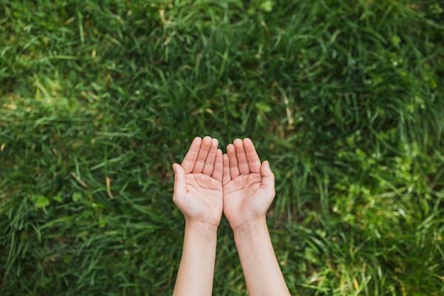 Koncepcja eco z rąk