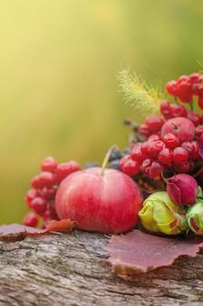 Koncepcja eko żywności i zbiorów. jesienne tło zbiorów.