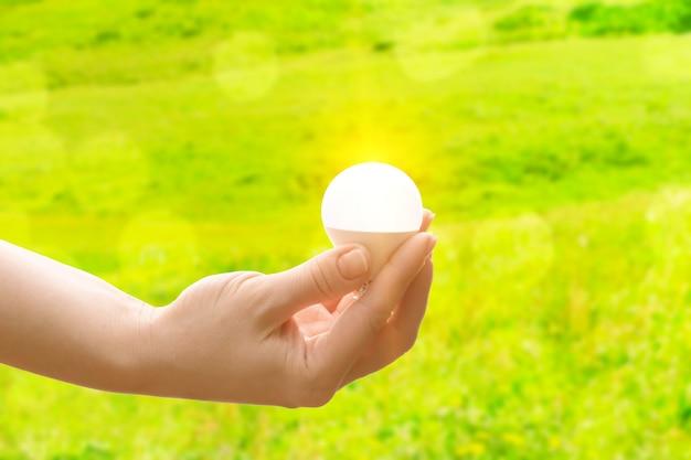 Koncepcja ekologii i naturalnej energii słonecznej, ręka ze świecącą żarówką na zielonym tle