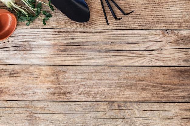 Koncepcja hobby ogrodnictwa. zielone sadzonki ogórków, małe ogrodowe widły lub grabie i łopata, ceramiczny garnek na drewnianym tle