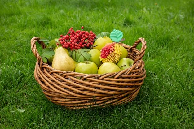 Koncepcja jesiennych zbiorów apple