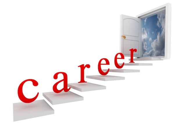 Koncepcja kariery