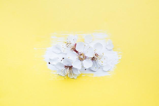 Koncepcja kwiat wiosny. kwitnąca wiśni gałąź na żółtym tle.