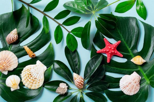Koncepcja lato z muszli, rozgwiazdy i tropikalnych liści monstera na niebieskim tle.