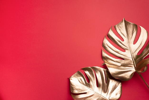 Koncepcja minimalistycznego stylu kwiatowy. egzotyczny trend letni. złoty monstera tropikalny liść palmy