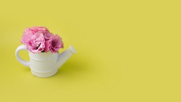 Koncepcja nowoczesne kwiaty z garnka podlewania