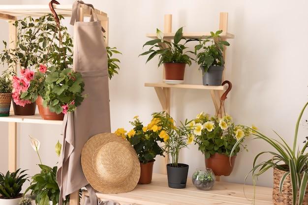 Koncepcja ogrodnicza z roślinami i fartuchem