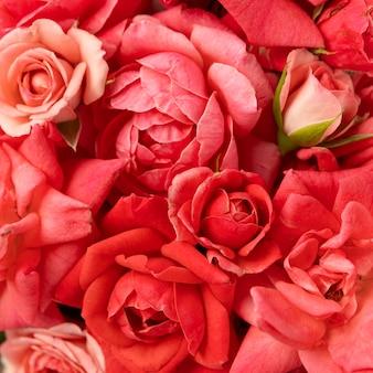 Koncepcja piękny kwiatowy walentynki