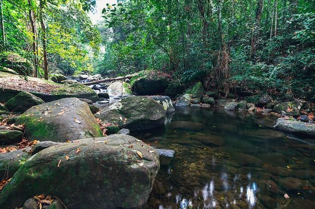 Koncepcja podróży do parku narodowego khao chamao waterfall kochają naturę