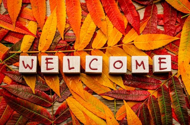 Koncepcja powitania jesieni. kolorowe liście z tekstem na białych drewnianych klockach