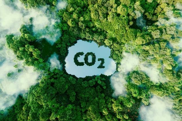 Koncepcja przedstawiająca zagadnienie emisji dwutlenku węgla i jego wpływu na przyrodę w postaci oczka wodnego w kształcie symbolu co2 położonego w bujnym lesie. renderowania 3d.