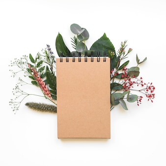 Koncepcja pustego notatnika z liści