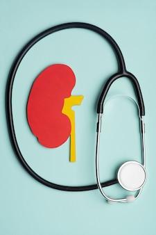 Koncepcja światowy dzień nerek, czerwone nerki i stetoskop na niebieskim tle.